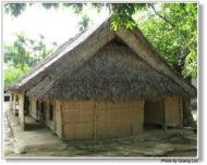 coconut-house